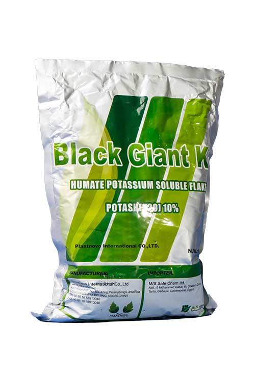 Black-Giant-k